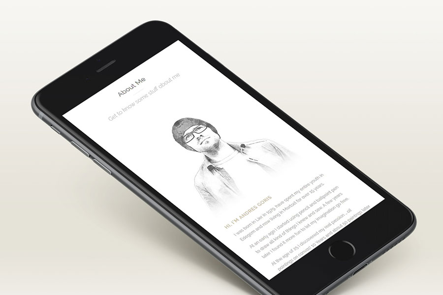 Andres Goris Webdesign Project